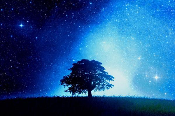 stelle che passione planetario milano