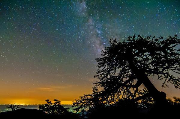 NON CI SONO PIÙ LE MEZZE STAGIONI. <br>Il 21 Giugno arriva l'estate... almeno in astronomia