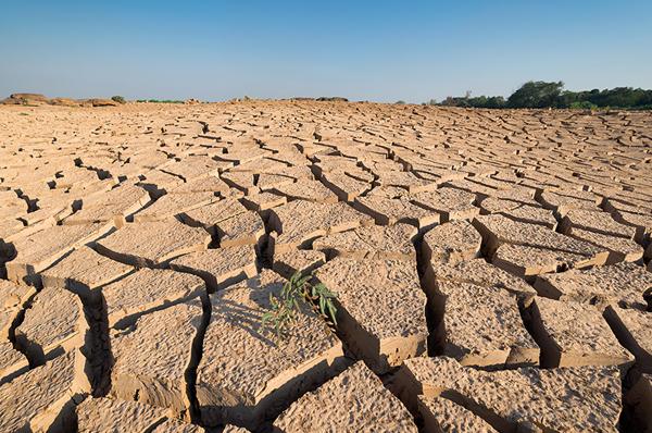 CAMBIAMENTI CLIMATICI: COLPA DELL'UOMO O EVENTO NATURALE?