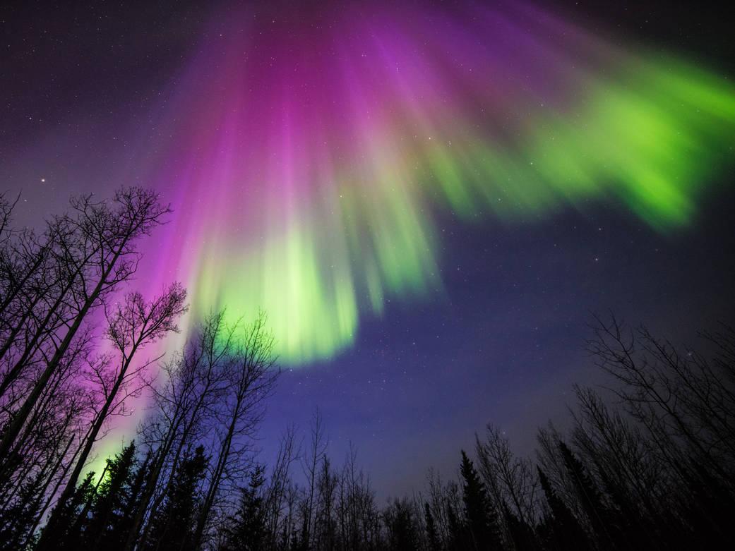 Veli di luce colorata: il fenomeno delle aurore polari Associazione LOfficina, aurora australe, aurora boreale, aurore polari, campo magnetico, Lapponia, news LOfficina